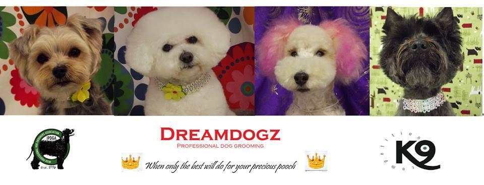 Dreamdogz