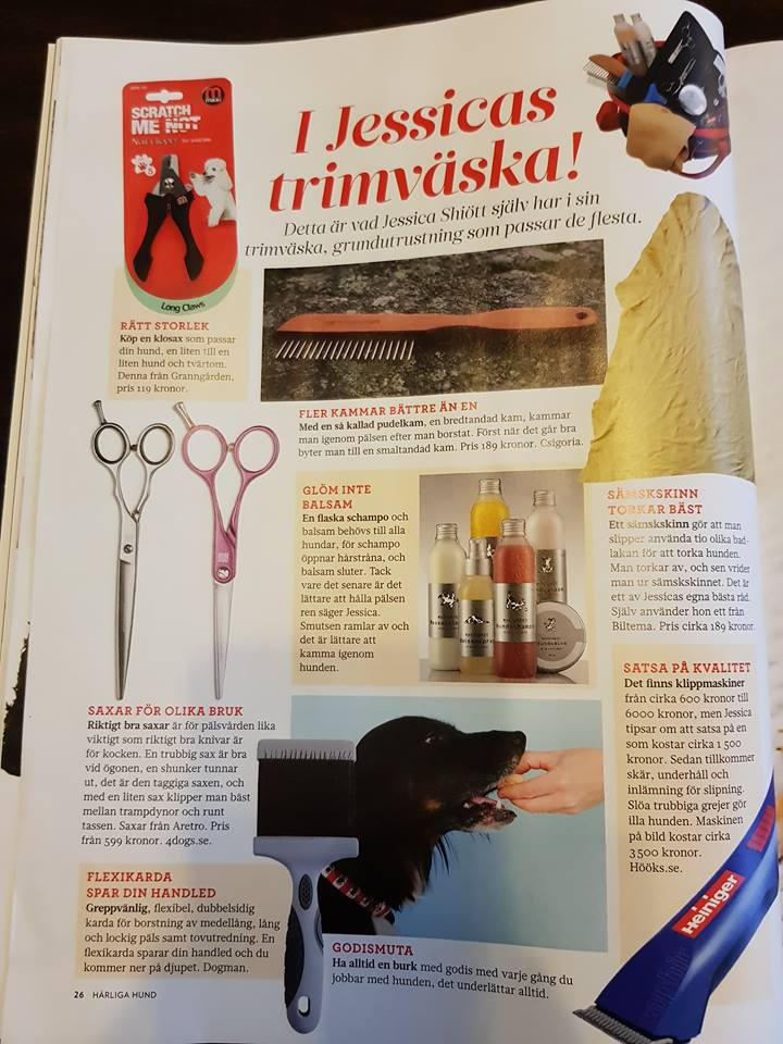 Jessica Schiøtt, Hundarnas Salong